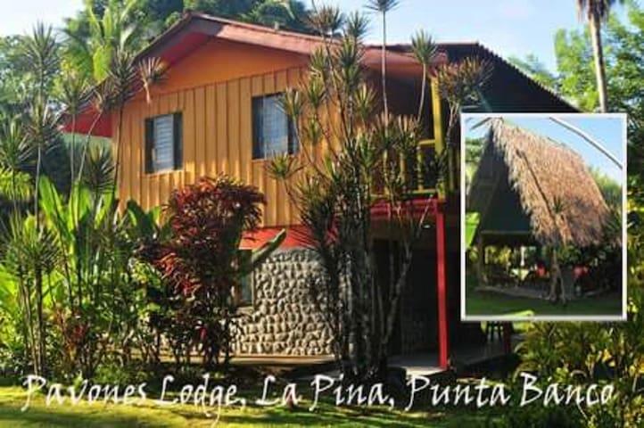 La Piña, La Bruschetta, Pavones - Pavones - Cabin