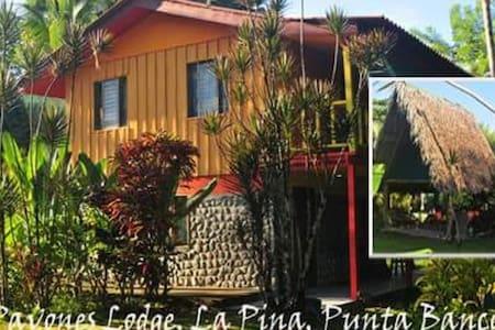 La Piña, La Bruschetta, Pavones - Pavones