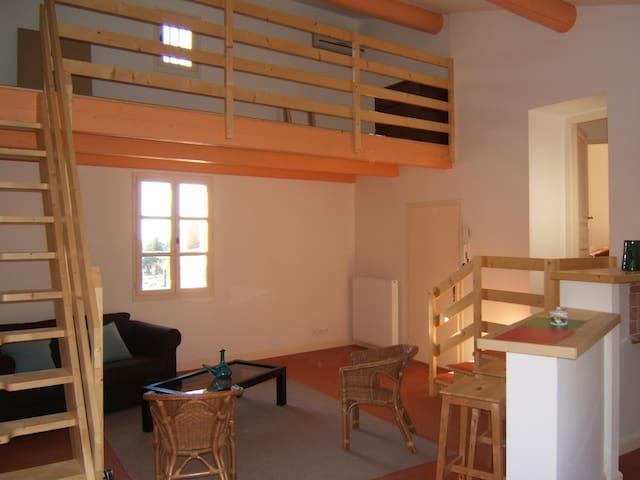 Appartement neuf dans hotel particulier XVIII
