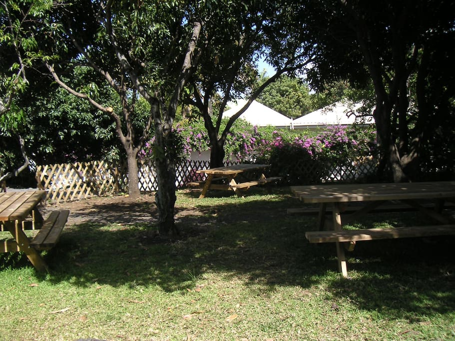 jardin aménagé pour recevoir