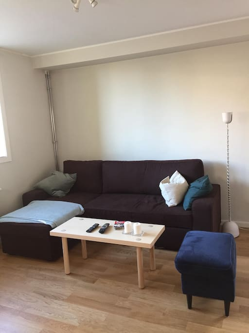 The living room has a sofa bed that fits two people