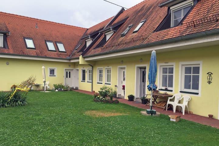 Gemütliche Etagen-Wohnung im Thermenland - Neudau - Apartment