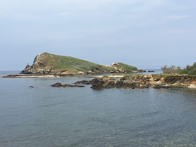Centuri - Cap Corse : Appartements