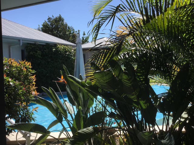 Tropical and  peaceful Peregian home with pool - Peregian Springs - Penzion (B&B)