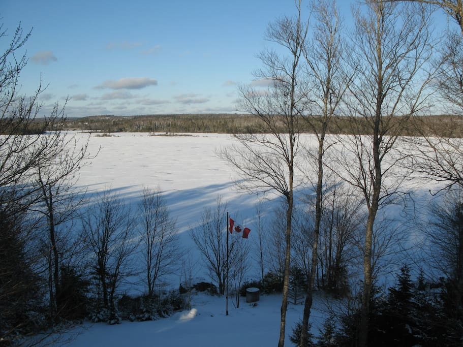 lake view in winter