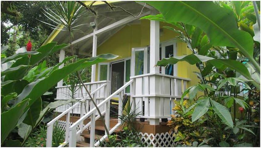 Rainforest Bungalow/Casita Zumbador/Puerto Rico - Naguabo - Bungalow