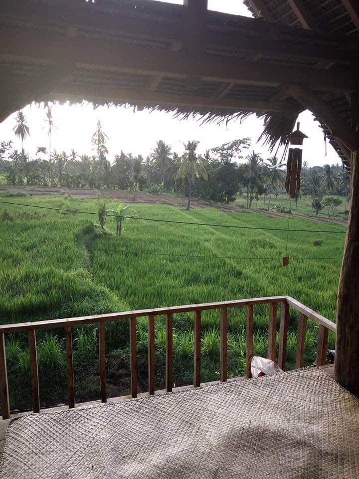 Rumah Dhea Osing Ethnic Guest House
