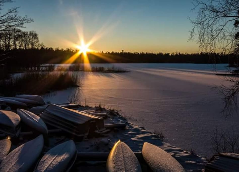 The sun can be very beautiful during winter.