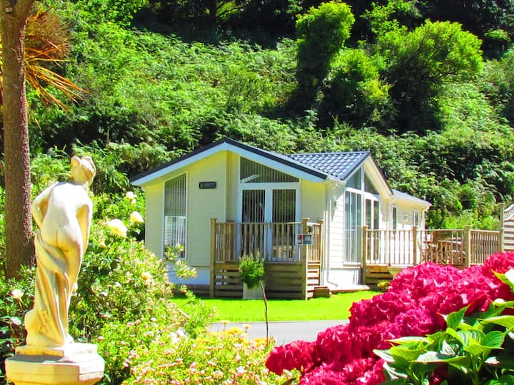 Luxury Lodge and Detox Package, Ilfracombe, Devon
