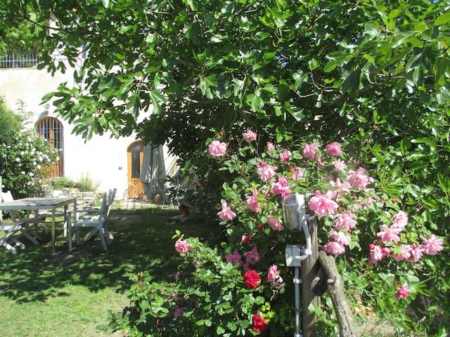 Casa immersa nel verde vista mare - Finale Ligure - Hus