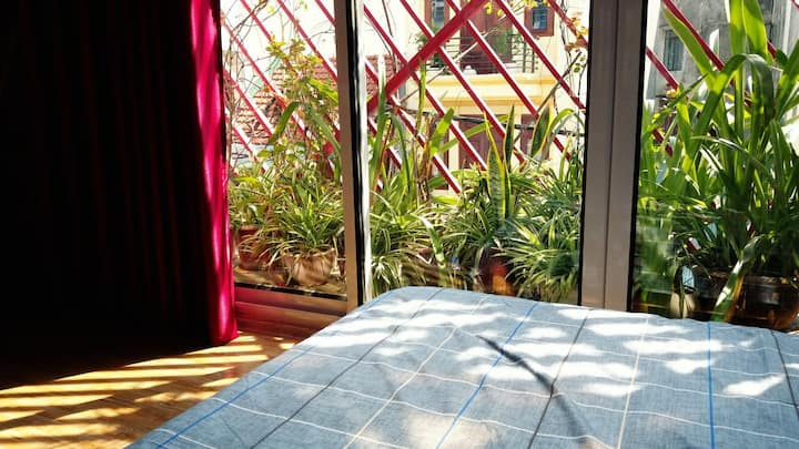 UMI House/Nature/Near Maket, 5 mins Old Quater