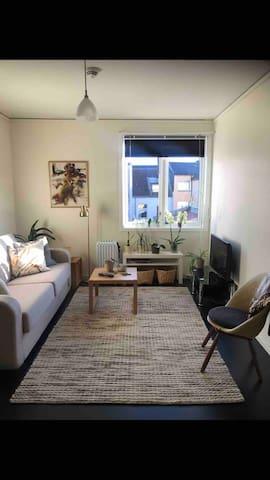 Liten leilighet i sentrum