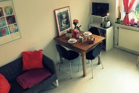 Gemütliches Zimmer am Ring - ミュンスター - アパート
