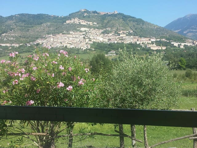 View of Alvito from our terrace