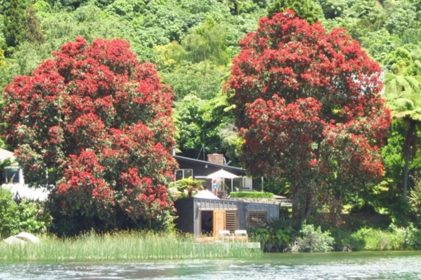 Towering native pohutukawas frame this stunning waterfront 3 br luxury property. The boatshed and private jetty give you direct access to stunning Lake Tarawera for swimming, fishing, and water sports. Natural hot pools accessible by boat.