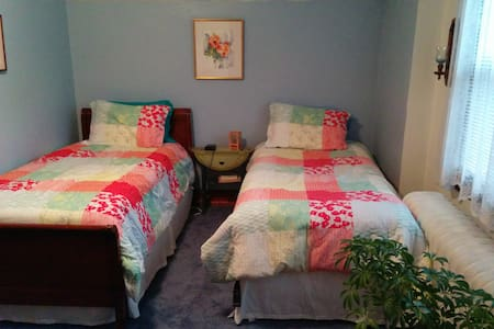 Colorful room with 2 single beds - Upper Darby - Rumah