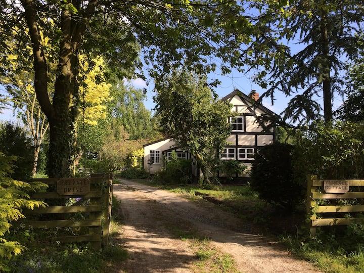 Yew Tree BnB (Family Suite), Pembridge, Leominster