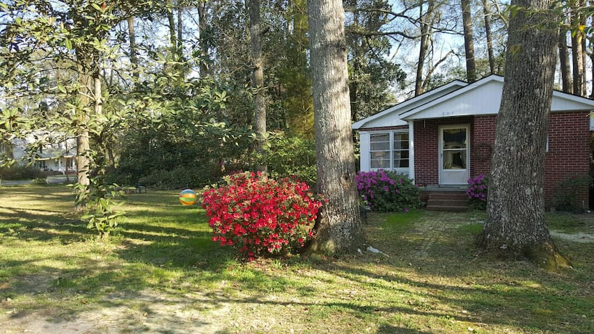 Cozy 2br Historic Home in Quiet Downtown Conway - Conway - Dom