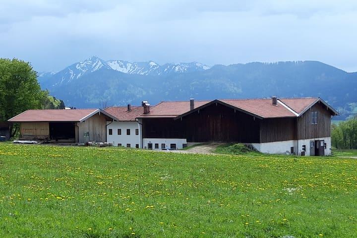 Pension Wilhelm - Zimmer Altholzmöbel