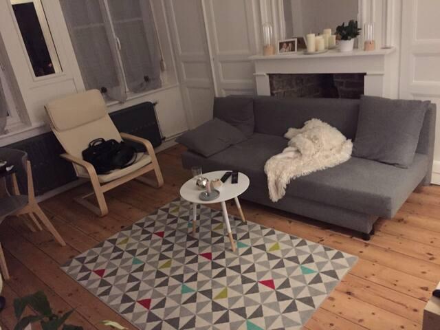 Appartement stylé St Maurice Pellevoisin - ลีลล์ - อพาร์ทเมนท์