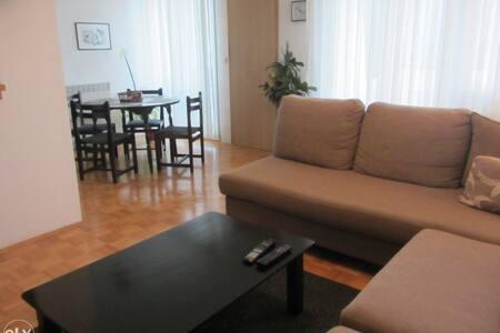 Cosy and modern apartmant in Ilidza-Sarajevo - Ilidža - Leilighet