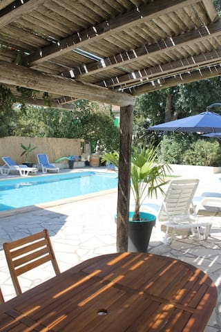 Le Jardin du Somail - Mimosa
