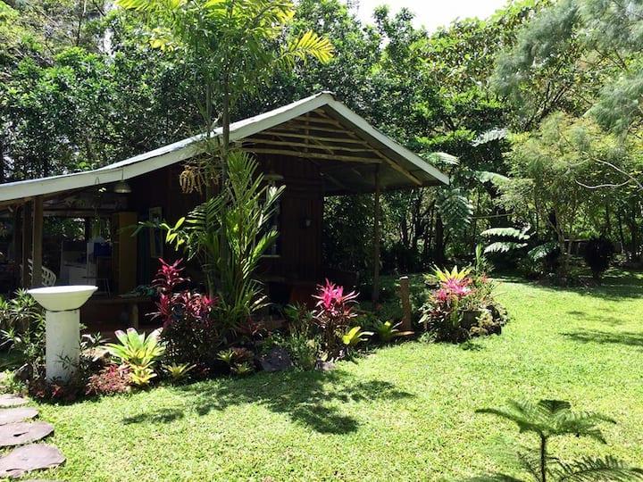 Gina's Garden and Farm.