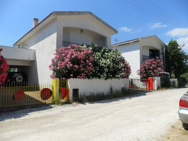 Apartment with 2 big bedrooms at the sea - Chalkidiki - Apartamento