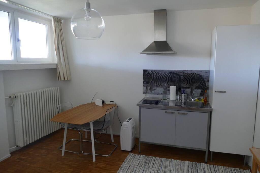 schlo blick direkt am wald wohnungen zur miete in siegen nordrhein westfalen deutschland. Black Bedroom Furniture Sets. Home Design Ideas