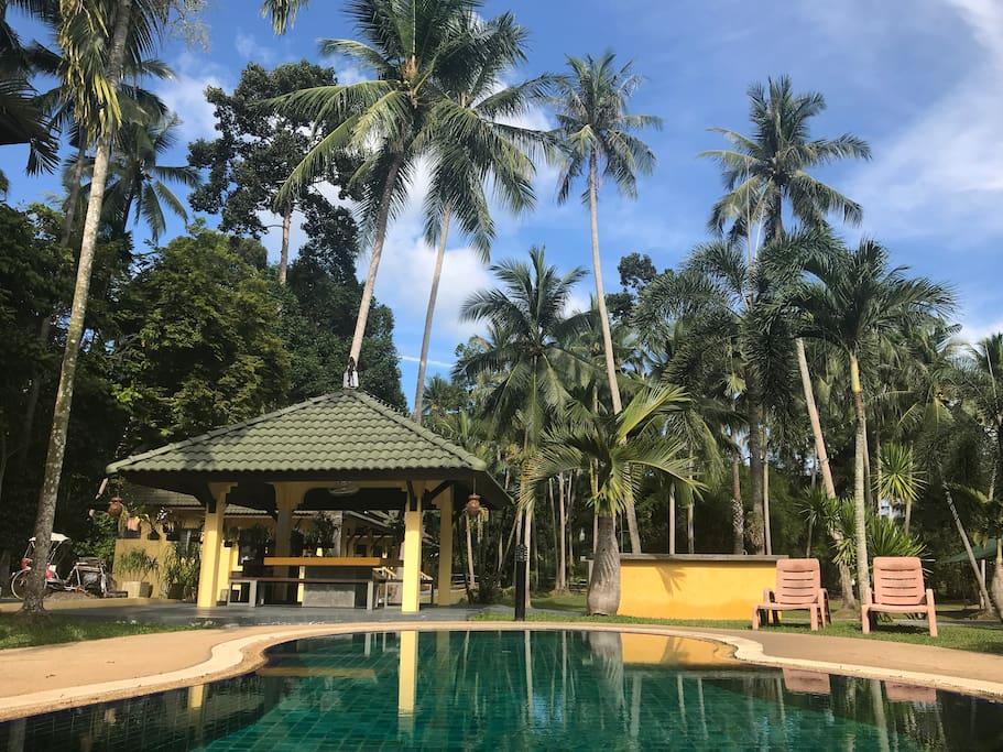 La piscine, le salathai et sa grande table et la cuisine/barbecue d'extérieur