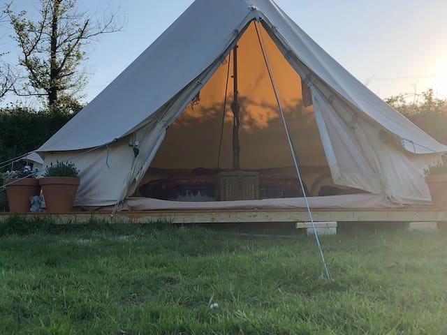 Wild Yurt Glamping (Yurt 2)