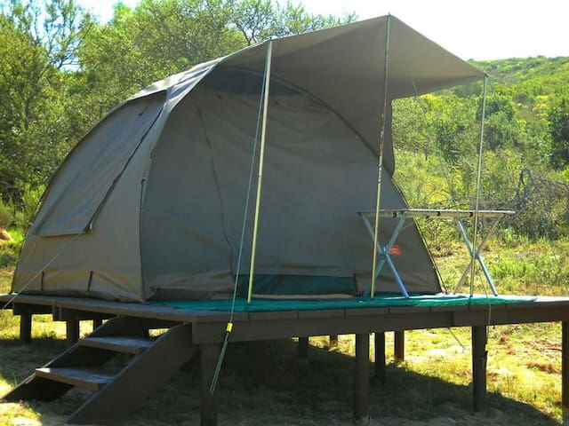 Permanent Furnished Tent 1