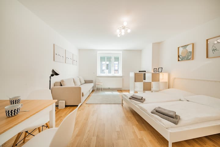 Homely Apartment in fancy area / 10 min to center