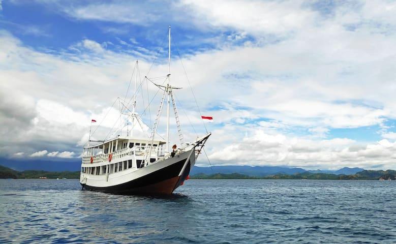 Day Trip to Komodo Island - Rafida Liveaboard