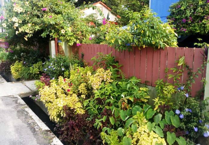 Hyacinths B&B Garden Apt
