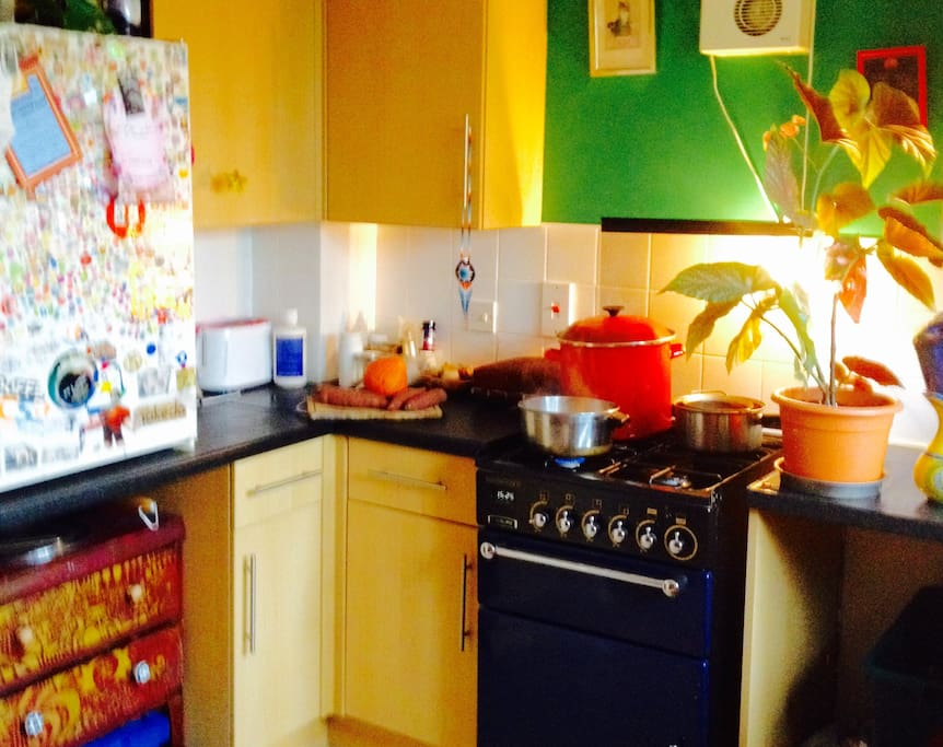 Well equipped kitchen with gas oven , blender , juicer , under sink water filter .