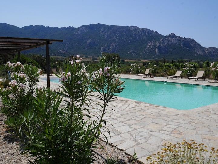 Maison avec piscine au coeur d'un vignoble bio