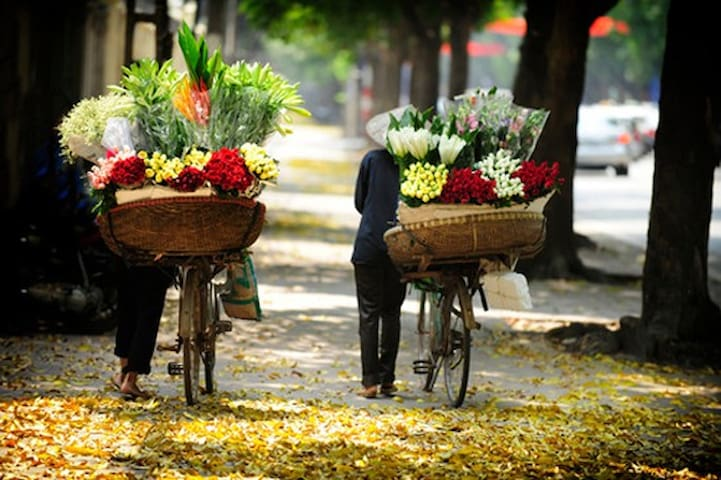 Phan Dinh Phung street- the most romantic street in Hanoi: 15 minutes from our house by motobike