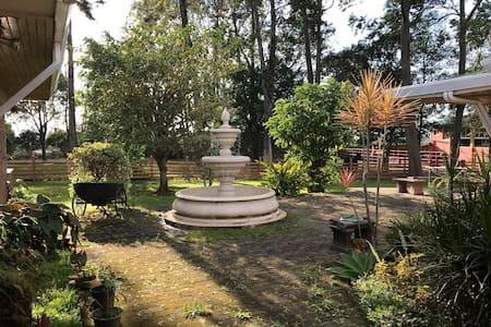 Pili's House