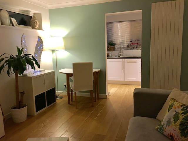 Comfortable One Double Bedroom Apartment - Woking - Wohnung