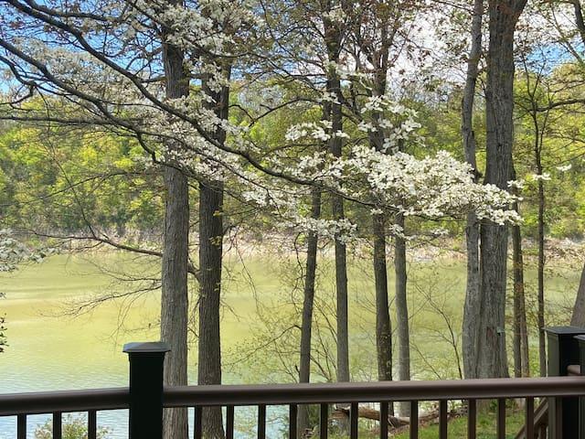 Peaceful Lake Boone Condo