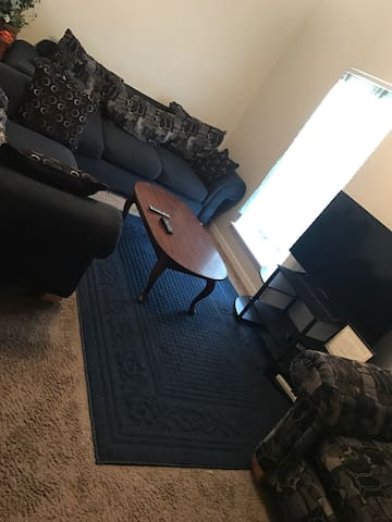 Cozy 1 Bedroom - Starkville  - Apartment