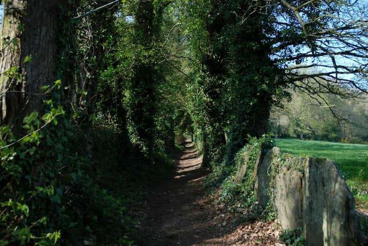 Bon repos, proche Abbaye et Lac de Guerlédan - Laniscat - Hus