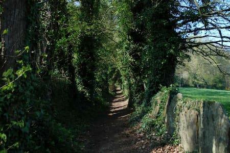Bon repos, proche Abbaye et Lac de Guerlédan - House