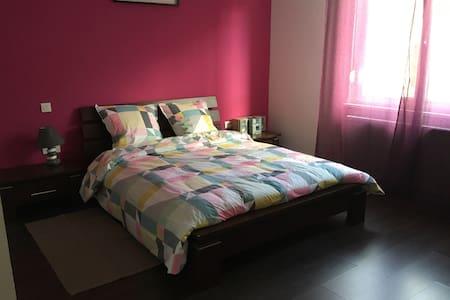 Appartement  de 3 pièces 70 m2 dans secteur calme - Bischheim