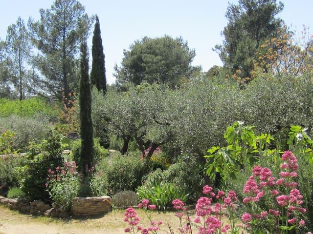 Maison des Oliviers,villa sleeps 6,South of France