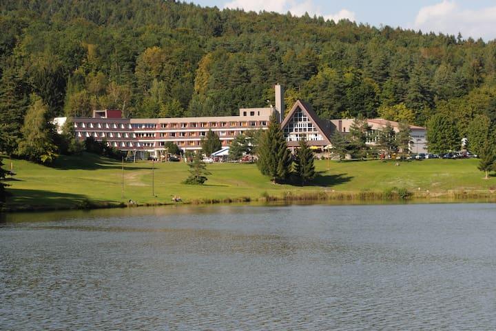 Apartmán v Activitypark Hotelu Všemina (Slušovice) - Všemina - Obsługiwany apartament