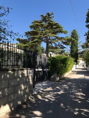 Casa Sasi