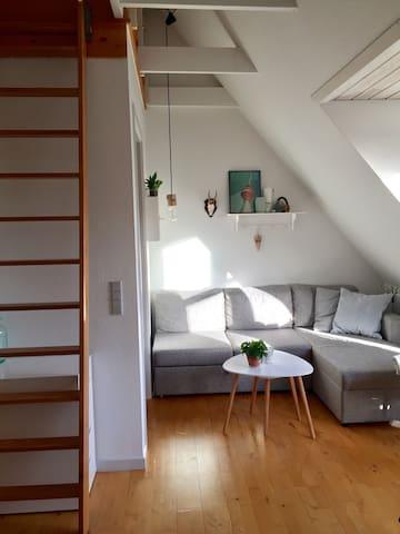 Hyggelig lejlighed i Hjørring centrum - Hjørring - Wohnung