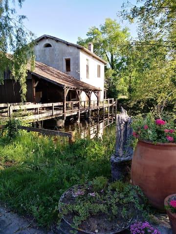 Chambre verte au Moulin de Salles